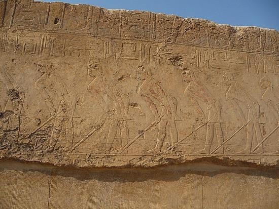 1.1286092562.hieroglyphics-at-the-funery-complex-at-saqqare