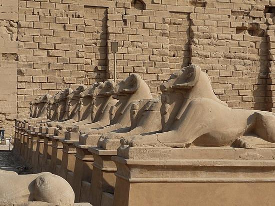 1.1286107791.the-phalynx-of-sphinx-at-karnak