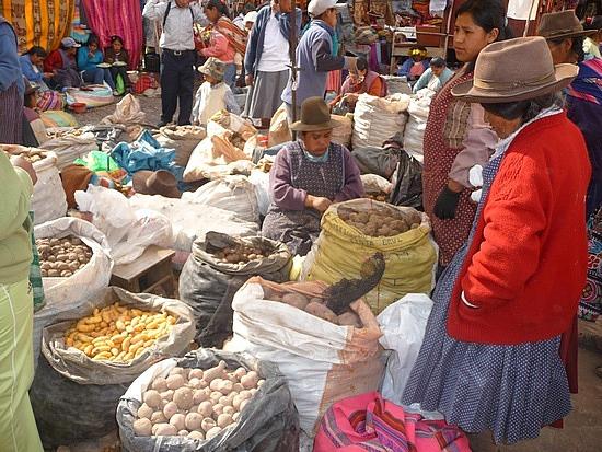 1.1282431944.1_pisac-market