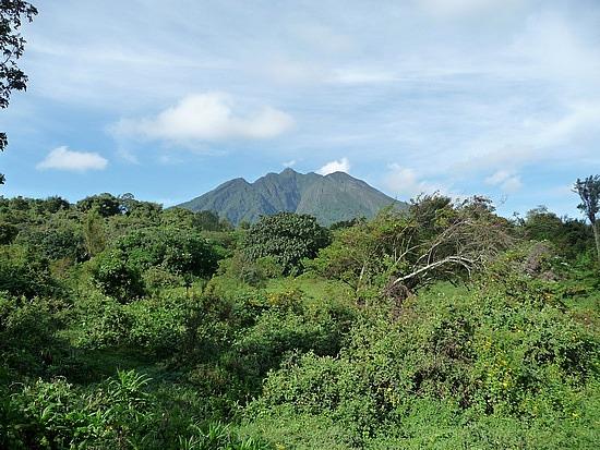 2.1319398215.sabyinyo-volcanoe-on-hike-to-see-golden-monkey