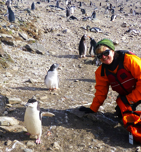 6.1424593041.me-and-some-chinstrap-penguins