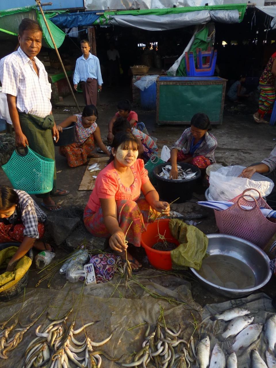 7.1477520383.fish-vendor-at-sittwe-morning-market